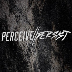 Perceive//Persist