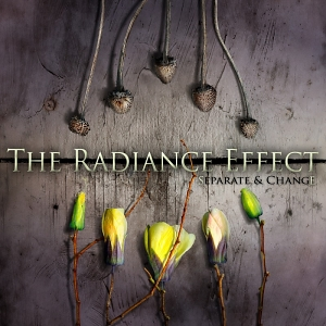 The Radiance Effect &#8211; Separate &amp; Change