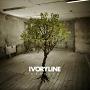 Ivoryline – Vessels