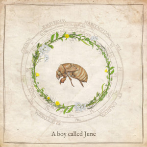 Adjy release A Boy Called June